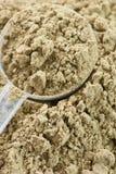 Raw organic hemp protein powder Royalty Free Stock Images