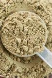 Raw organic hemp protein powder Stock Photo