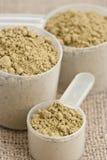 Raw organic hemp protein powder Royalty Free Stock Photography