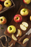 Raw Organic Honeycrisp Apples. Ready to Eat Royalty Free Stock Images