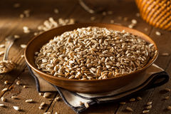 Raw Organic Hulled Sunflower Seeds Royalty Free Stock Photo