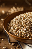Raw Organic Hulled Sunflower Seeds. In a Bowl Stock Photography