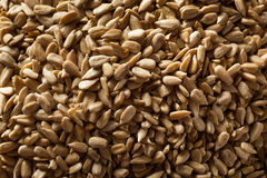 Raw Organic Hulled Sunflower Seeds Royalty Free Stock Image