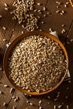 Raw Organic Hulled Sunflower Seeds. In a Bowl Royalty Free Stock Photo