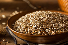 Raw Organic Hulled Sunflower Seeds. In a Bowl Stock Images