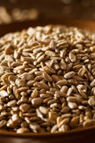 Raw Organic Hulled Sunflower Seeds Stock Photos