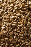 Raw Organic Hulled Sunflower Seeds Royalty Free Stock Images
