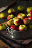 Raw Organic Lady Apples. For the Holidays Stock Photo