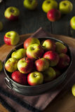 Raw Organic Lady Apples. For the Holidays Stock Photos