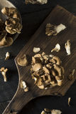 Raw Organic Maitake Mushrooms. In a Bunch Royalty Free Stock Photos
