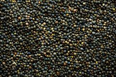 Raw organic marbled green lentils texture. Food ingredient background. Top view.  Stock Photography