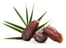 Raw Organic Medjool Dates Fruit. Close up of three big dates fruit with green leaf of palm tree isolated on white background Royalty Free Stock Photos
