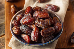 Raw Organic Medjool Dates Royalty Free Stock Photography