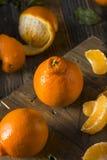 Raw Organic Minnela Tangerines Stock Photo