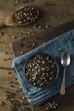 Raw Organic Mixed Peppercorns Royalty Free Stock Photos