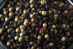 Raw Organic Mixed Peppercorns Stock Photo