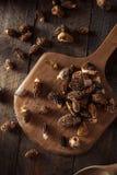 Raw Organic Morel Mushrooms Royalty Free Stock Image