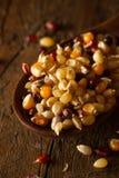 Raw Organic Multi Colored Calico Popcorn Royalty Free Stock Photo