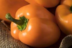 Raw Organic Orange Bell Pepper Royalty Free Stock Photography