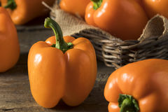 Raw Organic Orange Bell Pepper Royalty Free Stock Image