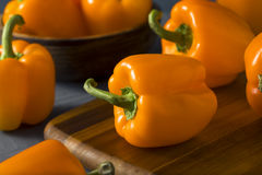 Raw Organic Orange Bell Peppers Stock Images