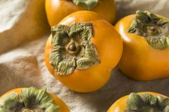 Raw Organic Orange Persimmon Fruit stock images