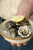 raw organic oyster from the irish west coast Stock Photography