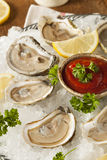 Raw Organic Oysters with Lemon Royalty Free Stock Photo
