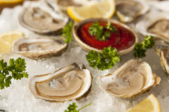 Raw Organic Oysters with Lemon Stock Photo