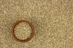 Raw organic pearl barley into a bowl on the background Royalty Free Stock Photography