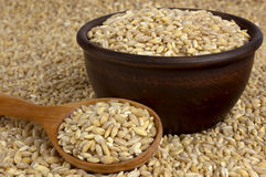 Raw organic pearl barley into a bowl on the background with a wo Stock Photos