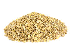 Raw organic pearl barley on a white background Stock Photo