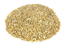 Raw organic pearl barley on a white background Stock Photos