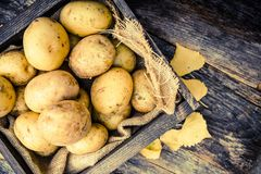 Raw Organic Potatoes Stock Images