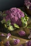 Raw Organic Purple Cauliflower Stock Photos