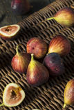 Raw Organic Purple Figs. Ready to Eat Stock Image