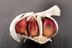 Raw organic purple garlic on slate Stock Photo