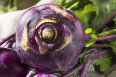 Raw Organic Purple Kohlrabi. Ready to Eat Royalty Free Stock Photo