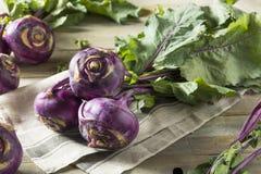 Raw Organic Purple Kohlrabi. Ready to Eat Royalty Free Stock Photos