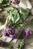 Raw Organic Purple Kohlrabi. Ready to Eat Stock Images