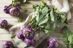 Raw Organic Purple Kohlrabi. Ready to Eat Stock Photography