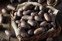 Raw Organic Purple Potatoes Royalty Free Stock Photos