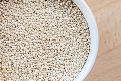 Raw organic quinoa seeds in white cup Stock Photography