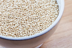 Raw organic quinoa seeds in white cup Stock Images