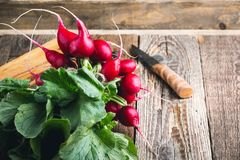 Raw organic radishes. On rustic wooden board, local vegetables Royalty Free Stock Photos