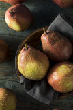Raw Organic Red Anjou Pears Royalty Free Stock Photo