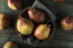 Raw Organic Red Anjou Pears Royalty Free Stock Images