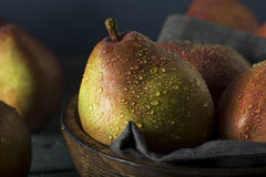 Raw Organic Red Anjou Pears Stock Photos