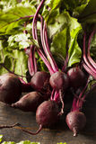 Raw Organic Red Beets Stock Photos