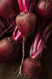 Raw Organic Red Beets Stock Photo